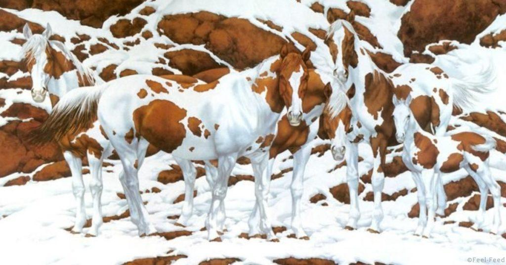 1477152163_how_many_horses_do_you_see_featured-696x365