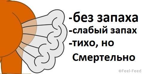 safe_image-163-1