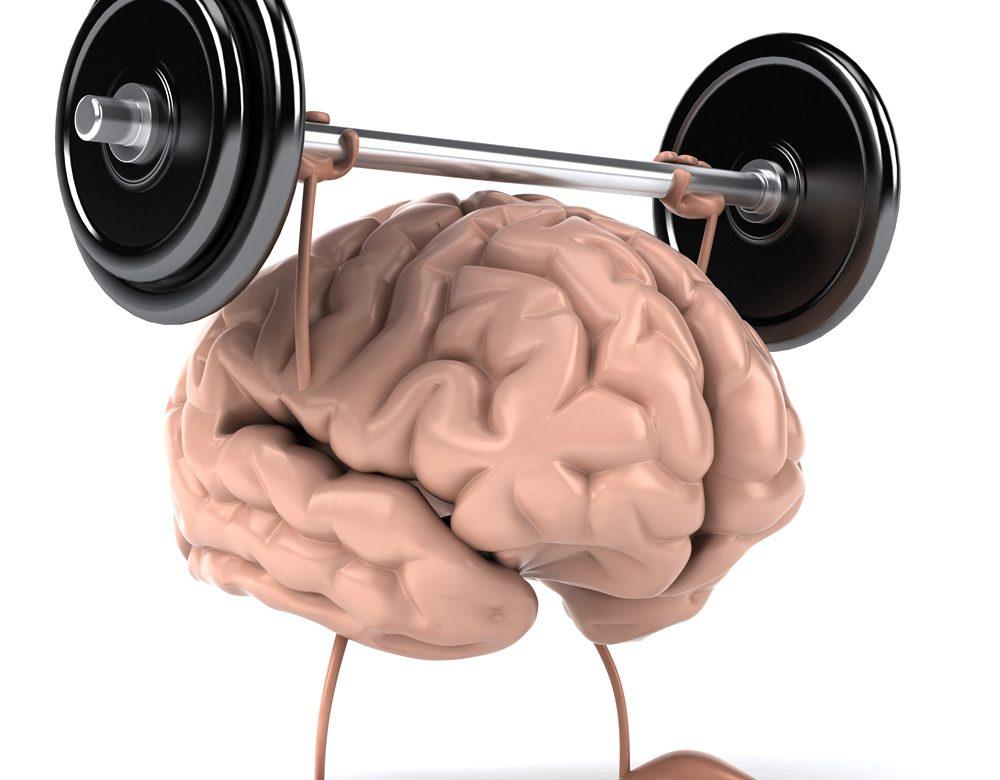 razvitie-mozga-1