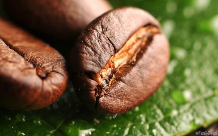 zerna-kofe-3
