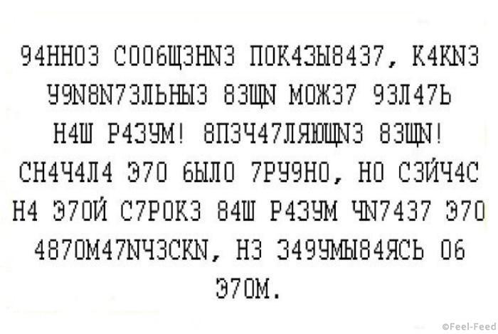 sajt7-3