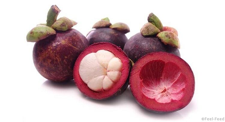 тропический фрукт мангустин