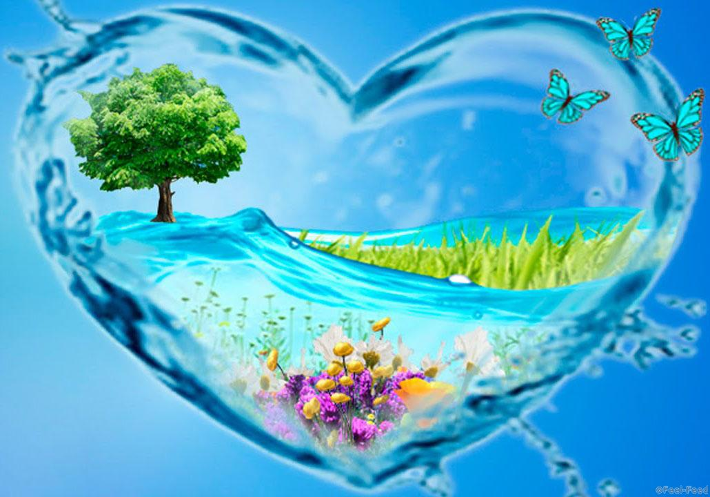 okovets_water_heart