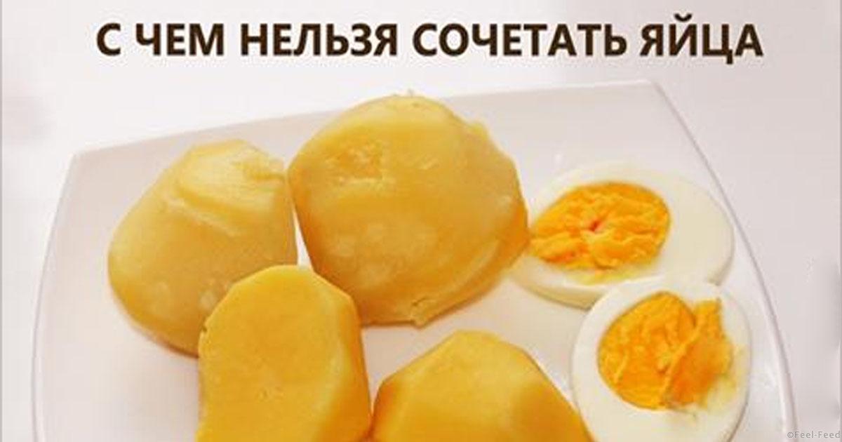 продукты которые нельзя употреблять при повышенном холестерине