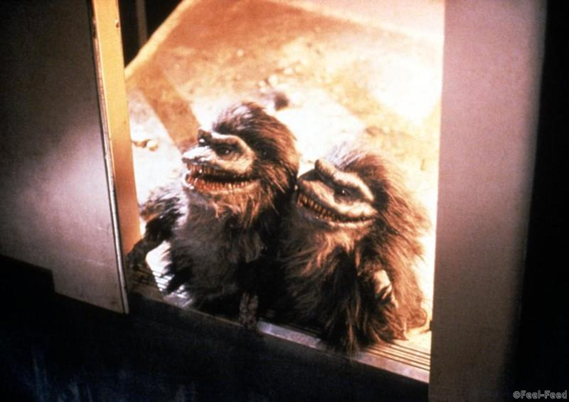 CRITTERS 3, 1991. (c) New Line Cinema.