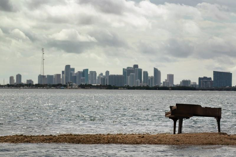 MIAMI - JANUARY 26: With the city of Miami skyline behind it a grand piano is seen on a sandbar in Biscayne Bay on January 26, 2011 in Miami, Florida. It is unknown how or why the heavy musical instrument was on the sandbar but some were speculating it was part of a music video production. The piano was charred from being burned. (Photo by Joe Raedle/Getty Images)