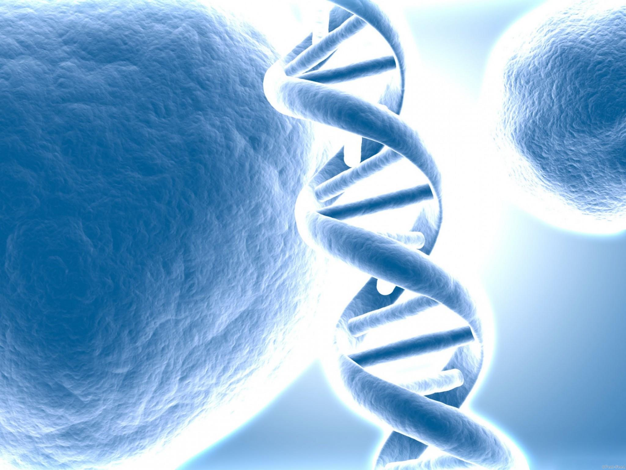dna_represented_tridimensional_resized_2560x1600-w