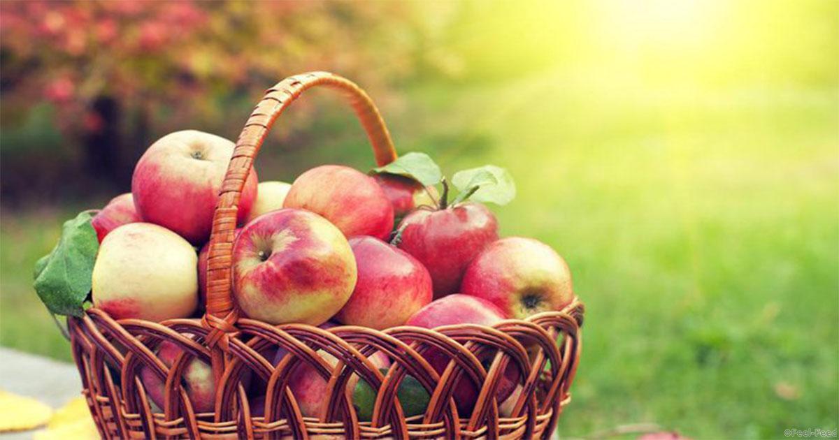 Подарки на яблочный спас 10