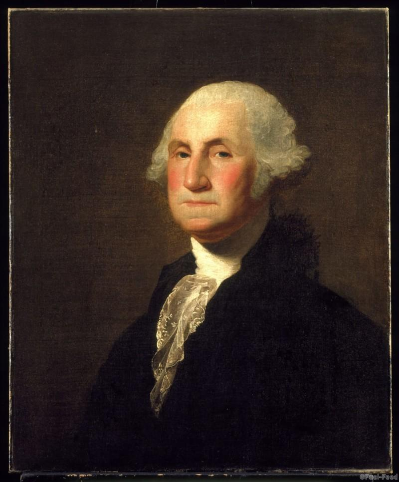biography of george washington the first president of the united states the commander in chief of th Schools in the united states teach children from an early age that the first president of the united states was george washington but teachers often forget to mention a small, kind of important detail- george washington was the first us president under the current united states constitution, but he wasn't the country's first president.